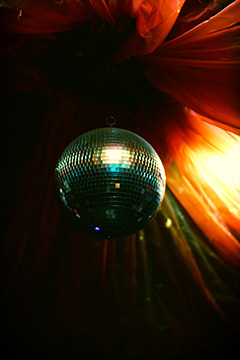 Disco Ball; photo David Vega