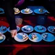 Chocolate cream pie at Happy Days tent at MIT